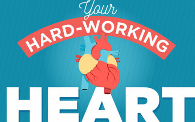 Your Hard Working Heart